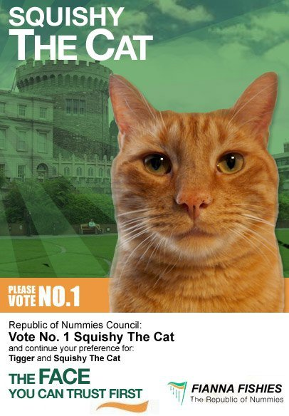 Vote No 1 Squishy The Cat