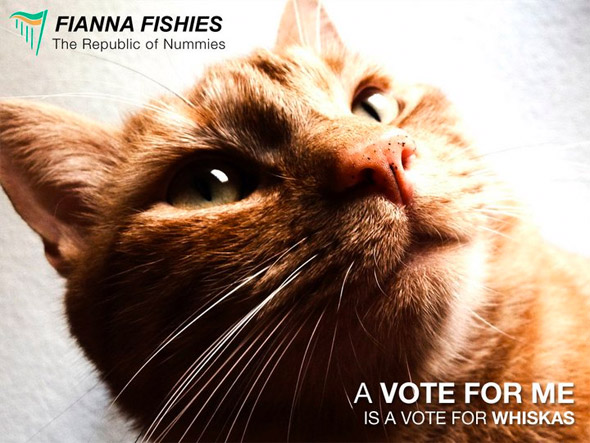 A vote for me is a vote for whiskas