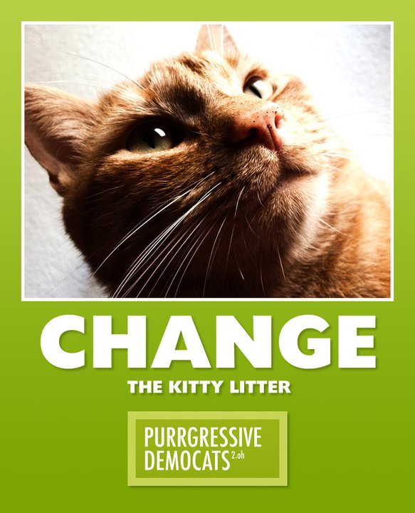 Change - The kitty litter