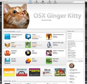 OSX Ginger Kitty